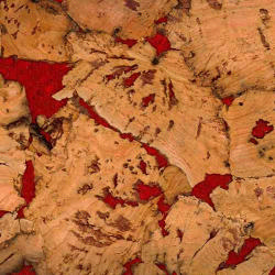 Pp Fal Vitoria Red